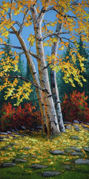 Wall Art - Painting - Autumn Birches by Frank Wilson