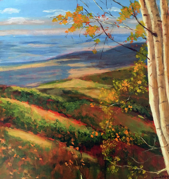 Painting - Autumn Birches by Lynne Atwood