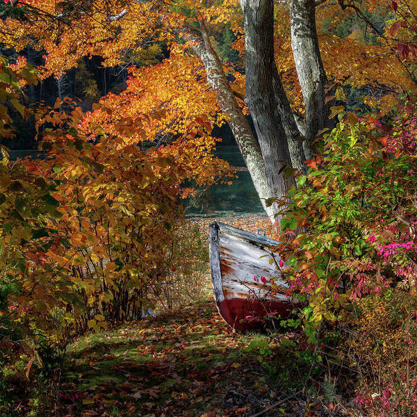 Photograph - Autumn Boat by Bill Wakeley