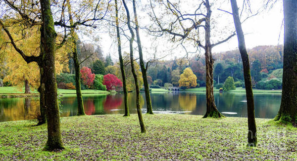 Photograph - Autumn By The Lake by Colin Rayner