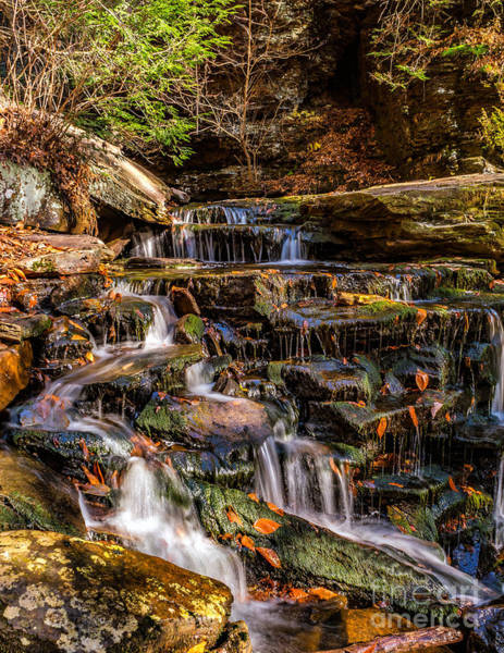 Photograph - Autumn Cascades by Nick Zelinsky
