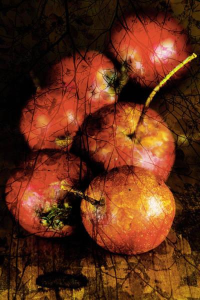 Digital Art - Autumn Collage by Raelene Goddard