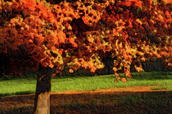 Photograph - Autumn Color-artistic by Don Johnson