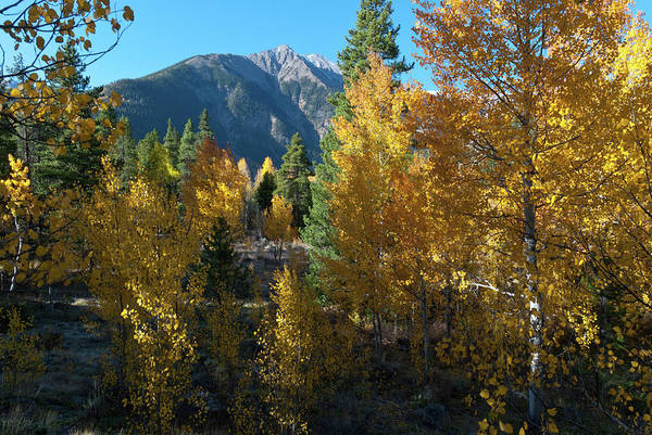Photograph - Autumn Color At Twin Lakes by Cascade Colors