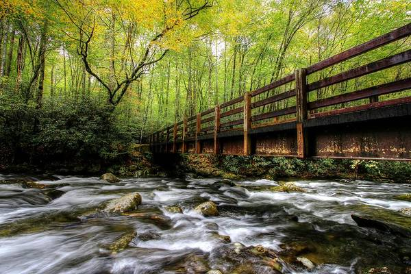 Photograph - Autumn Color Begins On The Kephart Prong Bridge  by Carol Montoya