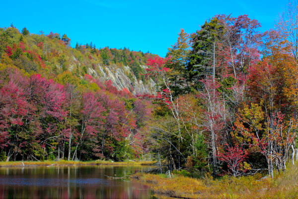 Photograph - Autumn Color On Bald Mountain Pond by David Patterson