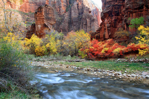 Zion National Park Photograph - Autumn Colors At Sinawava Temple  by Pierre Leclerc Photography