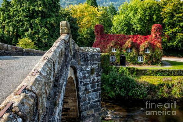 John I Photograph - Autumn Colours by Adrian Evans