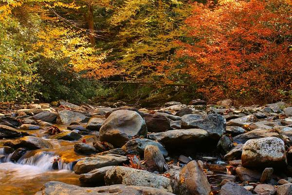 Photograph - Autumn Comes To The Mountains II by Frank G Montoya