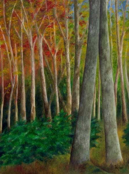 Painting - Autumn Contrast by FT McKinstry