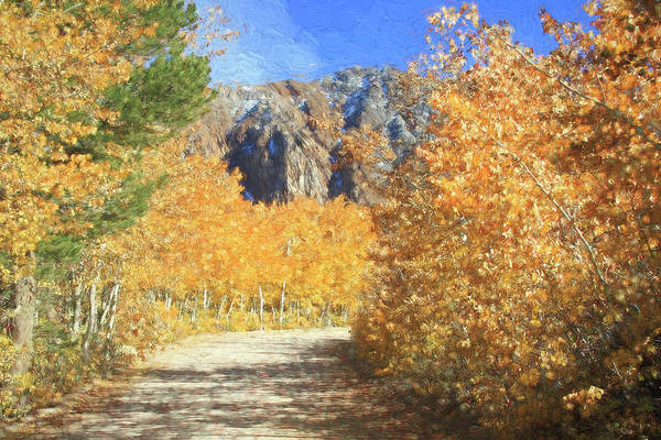 Wall Art - Photograph - Autumn Country Road by Donna Kennedy