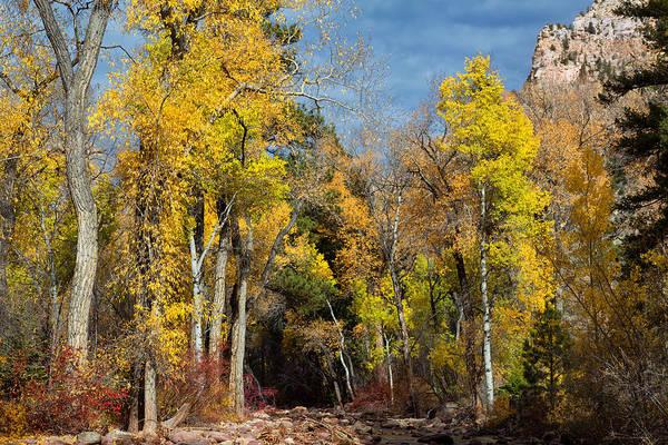 Vernal Fall Photograph - Autumn Creek by Kathleen Bishop