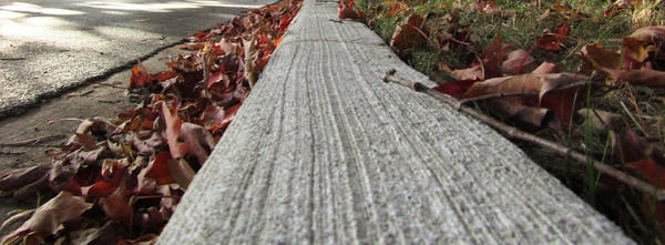 Photograph - Autumn Curb Appeal by Robert Knight