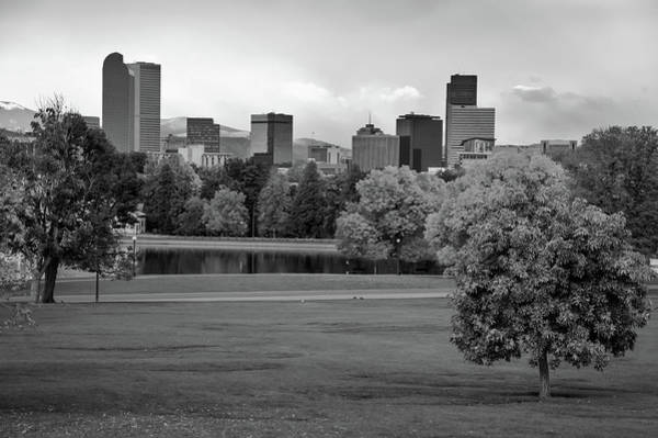 Denver Zoo Photograph - Autumn Denver Skyline - Mile High City View In Black And White by Gregory Ballos