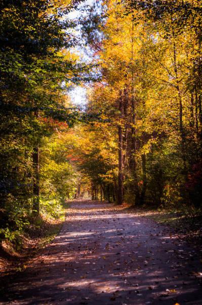 Photograph - Autumn Dreams by Parker Cunningham