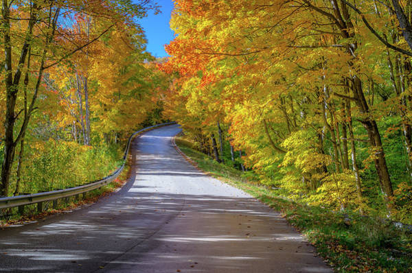 Photograph - Autumn Drive  by Gary McCormick