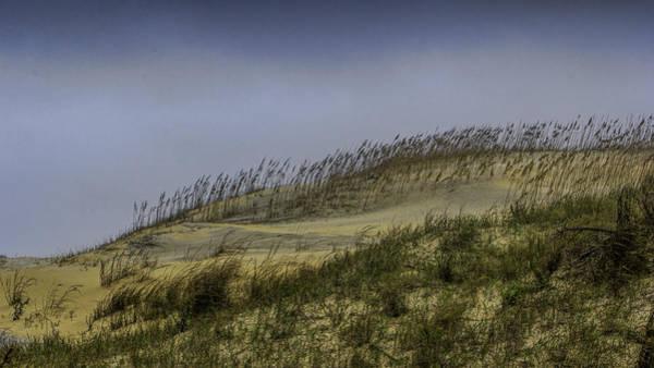 Photograph - Autumn Dunes by Pete Federico