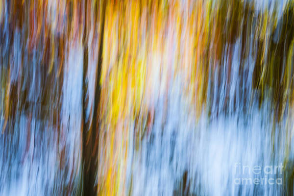 Abstract Impressionism Photograph - Autumn by Elena Elisseeva