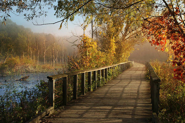 Marshes Photograph - Autumn Emerging by Rob Blair