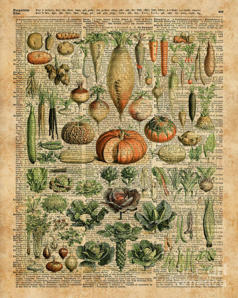 Vegetarian Digital Art - Autumn Fall Vegetables Kiche Harvest Thanksgiving Dictionary Art Vintage Cottage Chic by Anna W