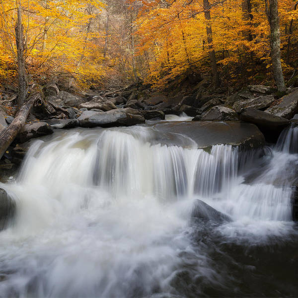 Catskills Photograph - Autumn Falling Square by Bill Wakeley