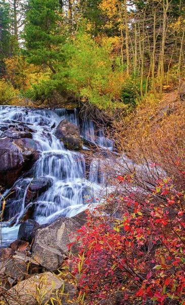Photograph - Autumn Falls In The High Sierra by Lynn Bauer