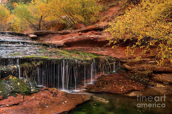 Wall Art - Photograph - Autumn Falls In Zion by Jamie Pham