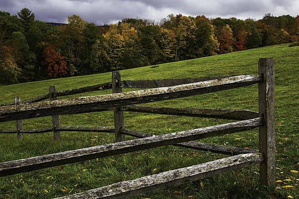 Photograph - Autumn Fence by Garry Gay
