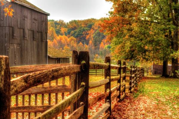 Recent Photograph - Autumn Fence Posts Scenic by Geraldine Scull