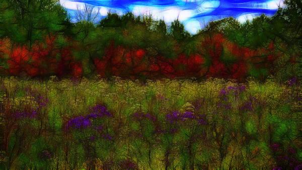 Fleur Digital Art - Autumn Field by Jean-Marc Lacombe