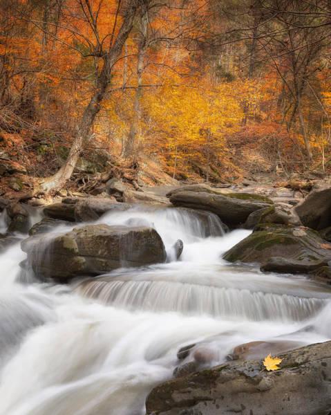 Catskills Photograph - Autumn Fire by Bill Wakeley