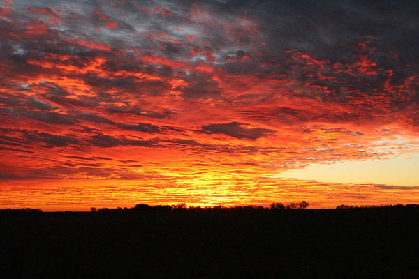 Wall Art - Photograph - Autumn Fire In The Sky by Weathered Wood