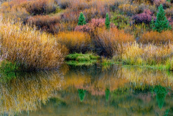 Photograph - Autumn Fishing Hole by TL  Mair