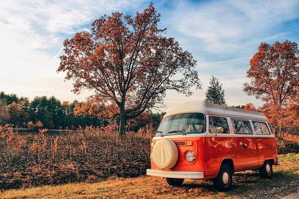 Microbus Photograph - Autumn Flatters Alani by Andrew Weills