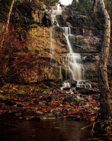 Photograph - Autumn Flow by Jedediah Hohf