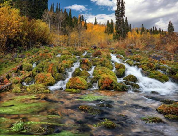 Eloquent Wall Art - Photograph - Autumn Flow by Leland D Howard
