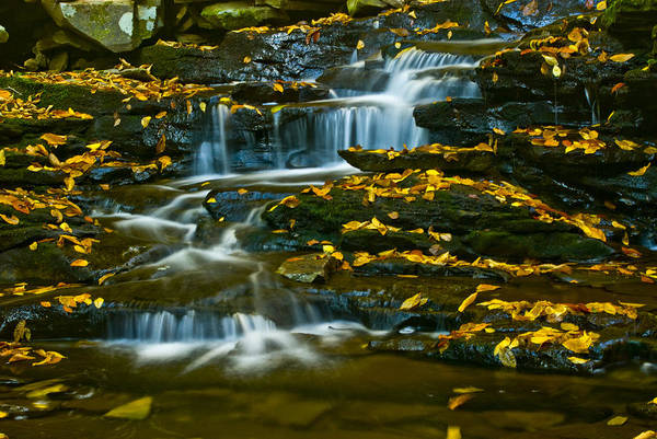Photograph - Autumn Flow by Paul W Faust -  Impressions of Light