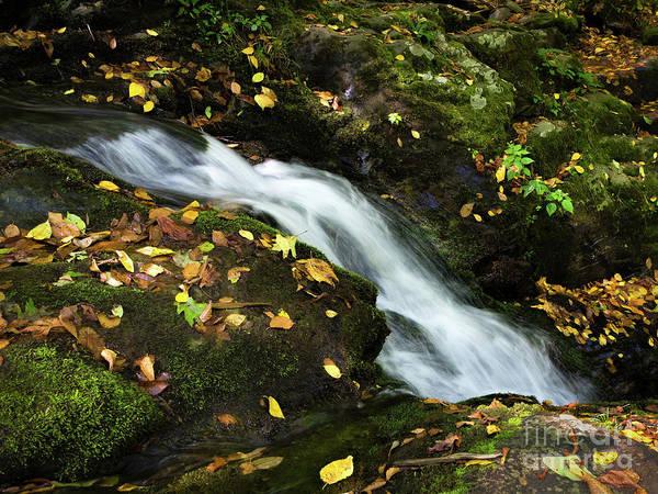 Photograph - Autumn Flow, Shenandoah National Park, Virginia  -74189 by John Bald