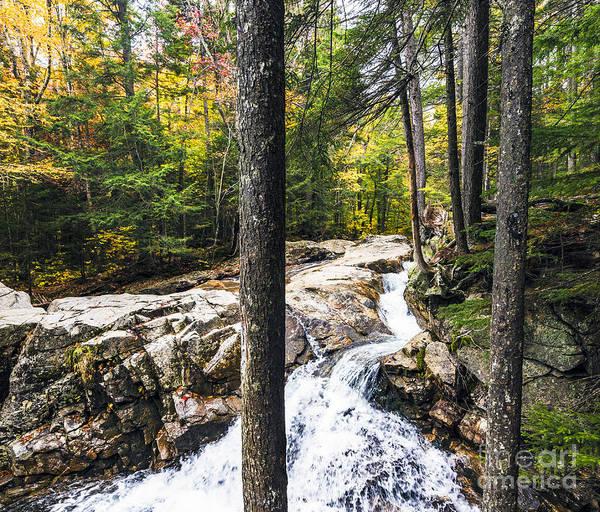 Photograph - Autumn Flows by Anthony Baatz