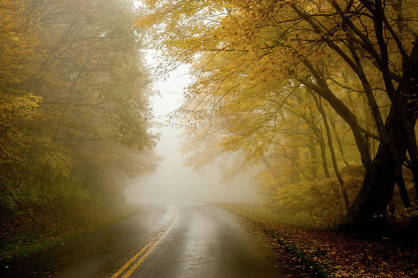 Road Map Photograph - Autumn Fog Drive North Carolina by Terry DeLuco