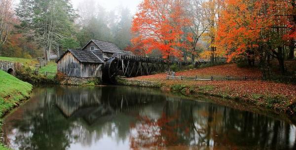 Photograph - Autumn Foggy Morning At Mabry Mill Virginia  by Carol Montoya
