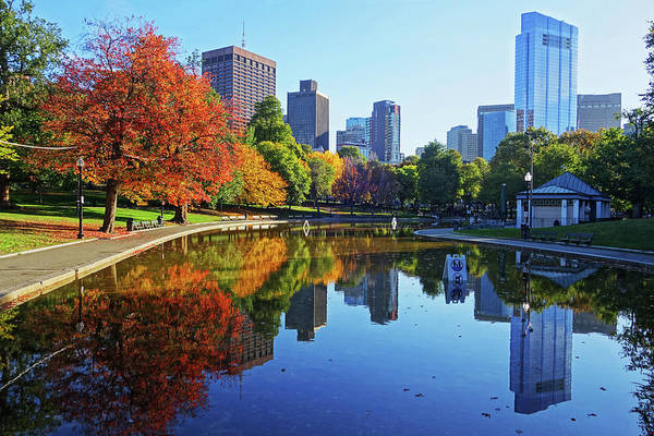 Photograph - Autumn Foliage On The Boston Common Frog Pond by Toby McGuire