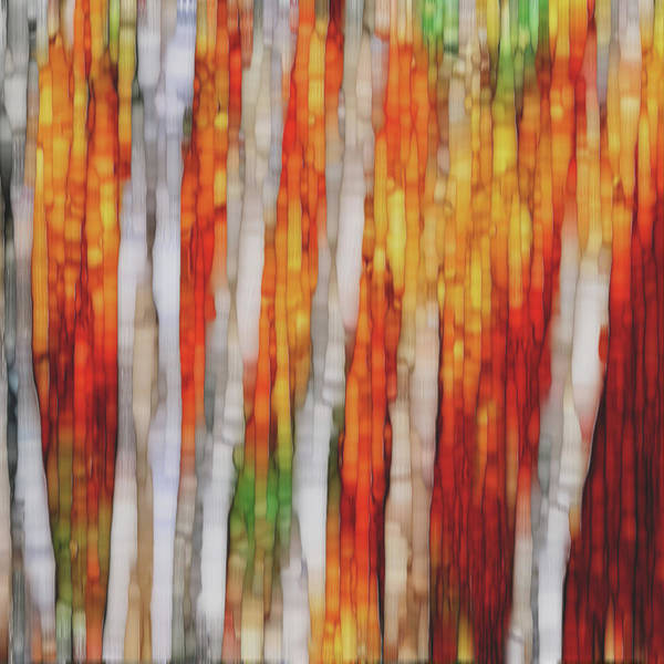 Wall Art - Painting - Autumn Forest by Jack Zulli