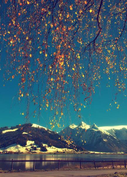 Ceca Wall Art - Photograph - Autumn Glory by Svetlana Peric