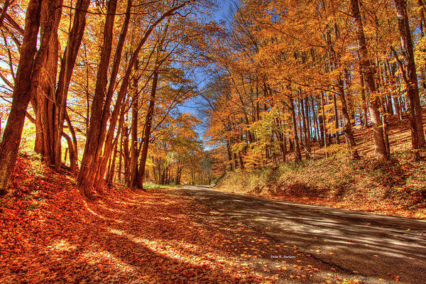 Photograph - Autumn Glow by Dale R Carlson