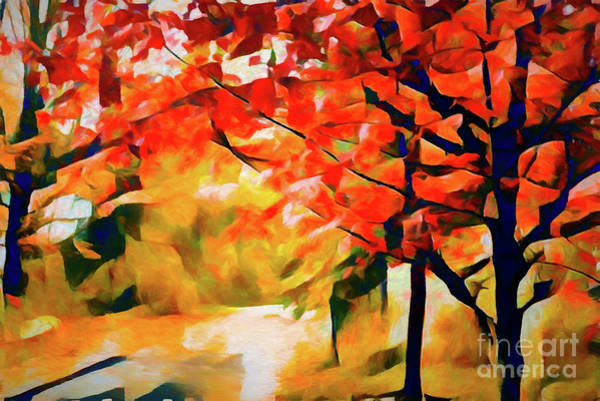 Photograph - Glorious Foliage On The Rail Trail - Abstract by Anita Pollak