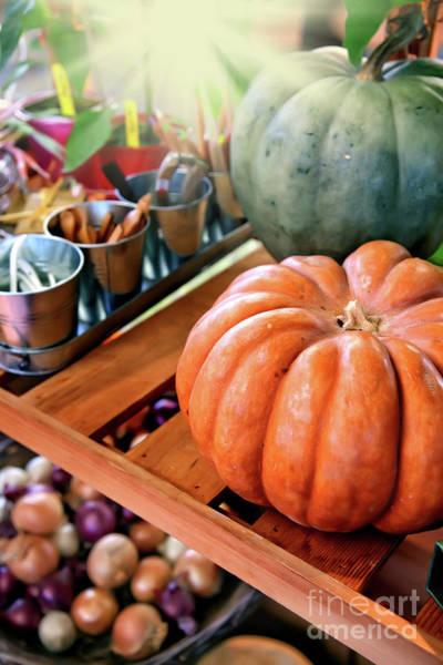 Photograph - Autumn Harvest by Ariadna De Raadt