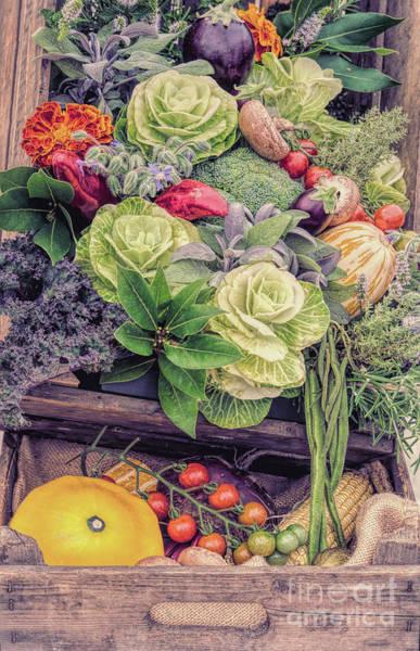 Kale Photograph - Autumn Harvest by Tim Gainey