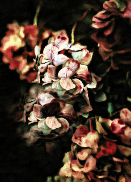 Colored Pencils Mixed Media - Autumn Hydrangeas by Georgiana Romanovna