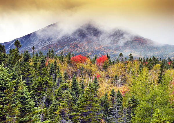 Northern Maine Wall Art - Photograph - Autumn In Baxter State Park Maine by Brendan Reals